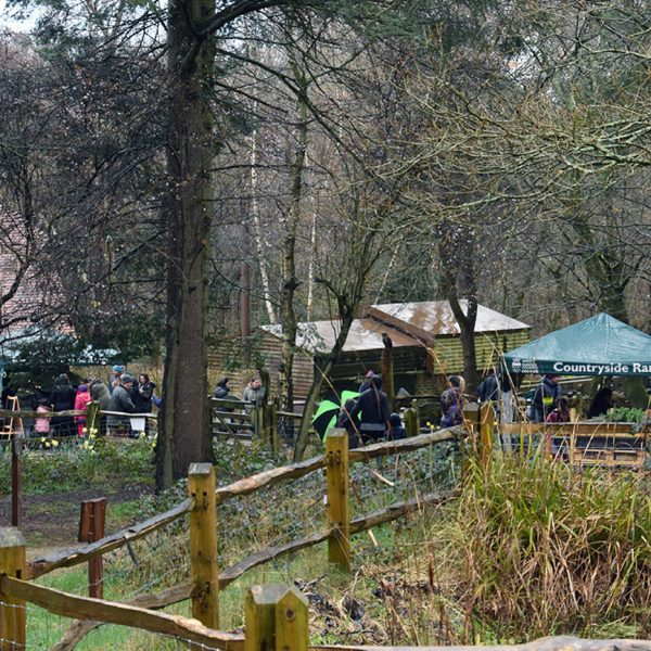 Easter At Buchan Country ParkBuchan Country Park Easter Egg Hunt 2016 | fobcp.org.uk