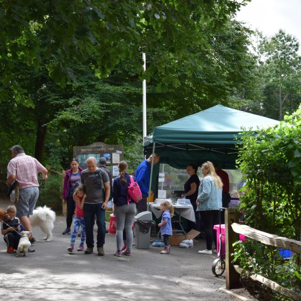 Buchan Country Park - Art In The Park 2016 | fobcp.org.uk